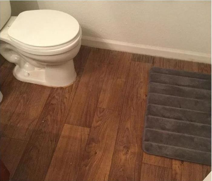 Water Damage Replace a Toilet In 10 Steps