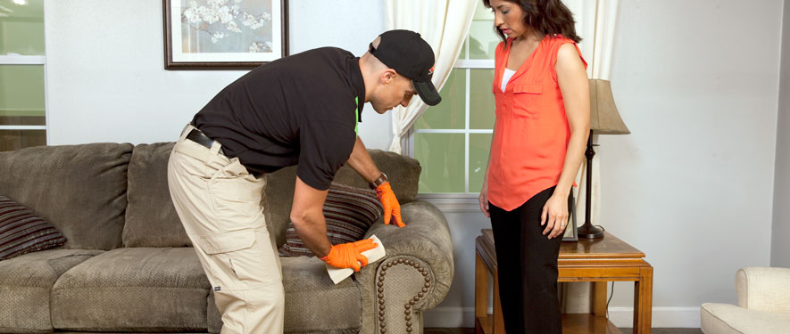 Hopkinsville, KY carpet upholstery cleaning